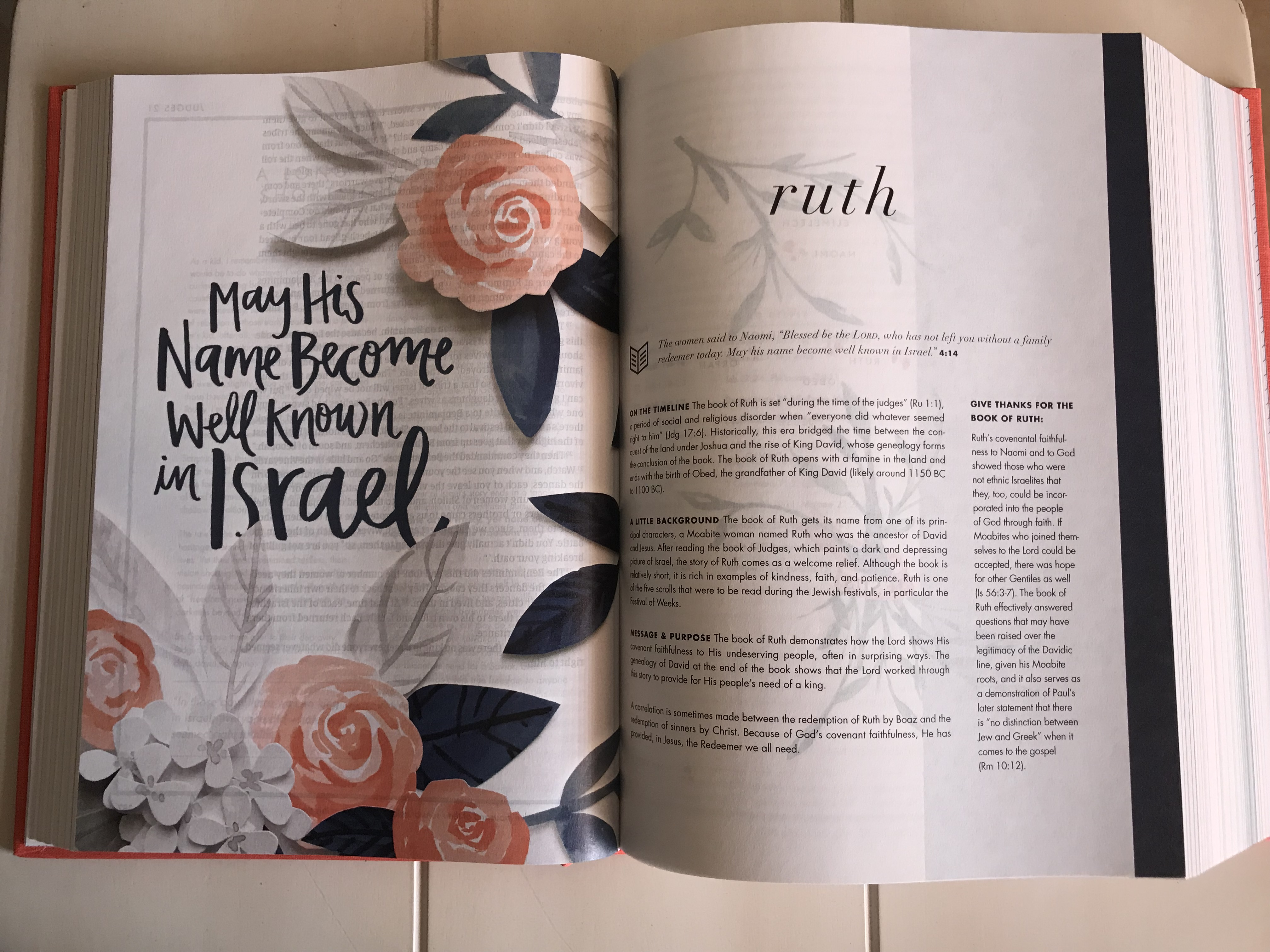 she-reads-truth-bible-review-and-giveaway